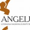 Premiul ANGELUS / Cartea șoaptelor s-a calificat în finală. VOTAȚI  Cartea șoaptelor !