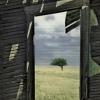Ce-am mai rîs /  Un nou roman de William Saroyan în limba română