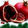 VARUJAN VOSGANIAN / Շնորհավոր Նոր Տարի եւ Սուրբ Ծնունդ