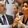 Genocidul armean / Altercație între un ministru turc și un parlamentar francez la Adunarea parlamentară NATO din Turcia