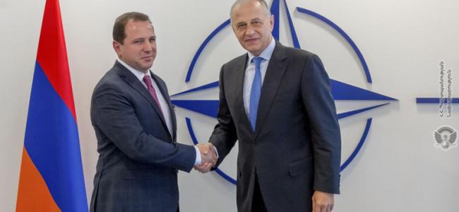 NATO / David Tonoyan, ministrul armean al Apărării s-a întîlnit cu Mircea Geoană, secretarul general adjunct al NATO